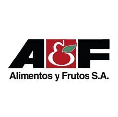 Le scaffalature drive-in di Mecalux hanno dimostrato la loro resistenza di fronte ai terremoti nello stabilimento in cui il produttore di frutta e verdura congelata Alifrut possiede a Quilicura (Santiago del Cile)